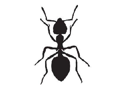 frelon silhouette